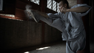 A Young Monk Unites Body and Spirit Through Kung Fu