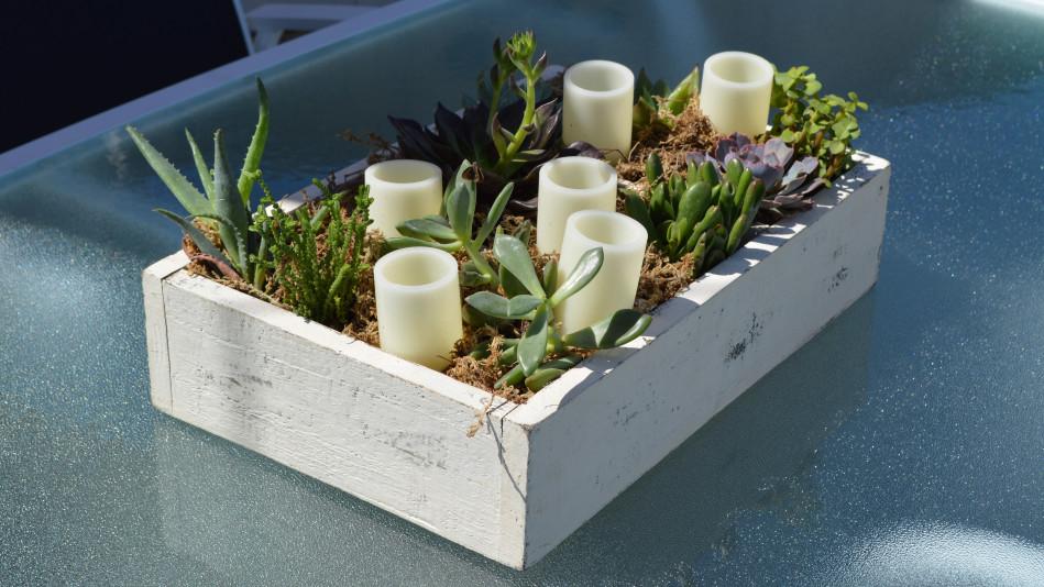 Succulent Table Planter Video