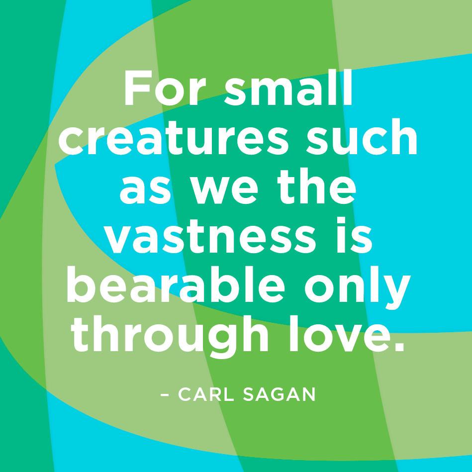 Carl Sagan Love Quote: Carl Sagan Quote
