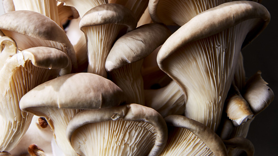cooking with mushrooms