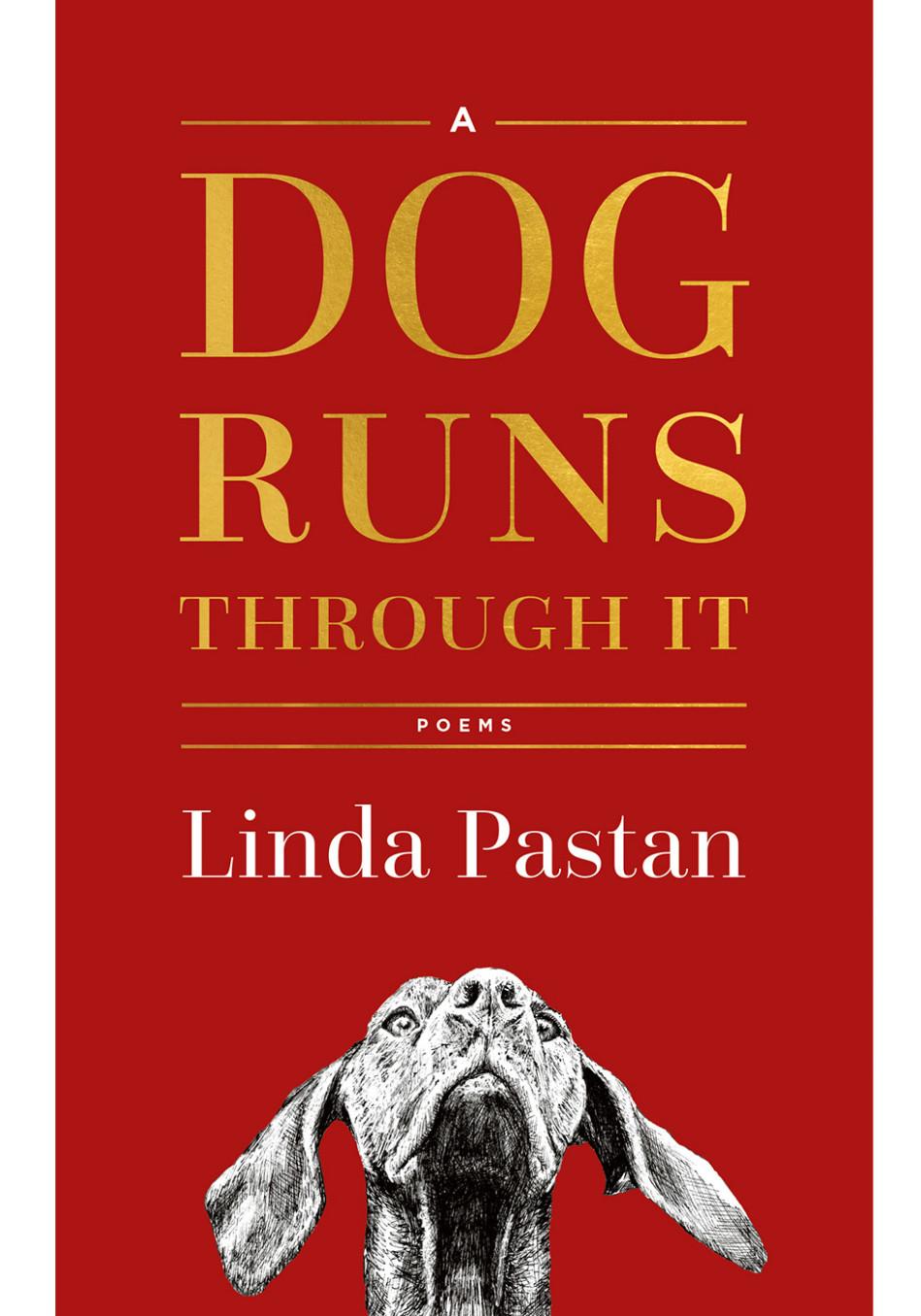 best books to read april 2018 a dog runs through it. Black Bedroom Furniture Sets. Home Design Ideas