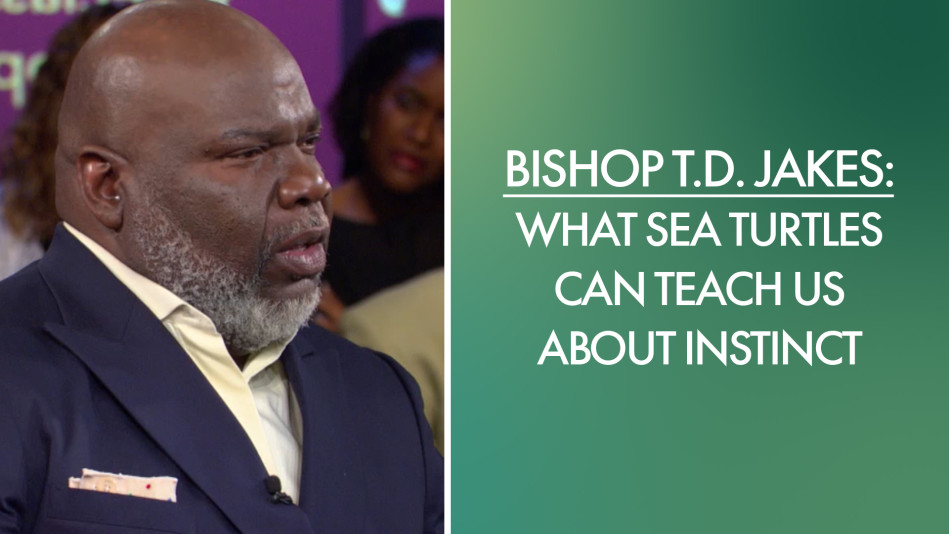 Bishop T D  Jakes: What Sea Turtles Can Teach Us About Instinct