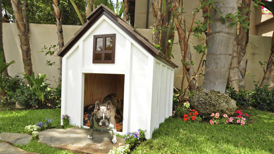 The Best Dog Houses 2018