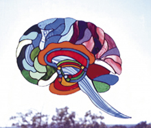 Dr. Jill Bolte Taylor's stained glass brain