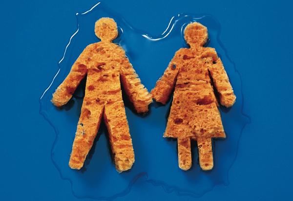 The Sponge People