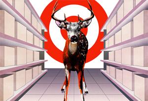Deer in target