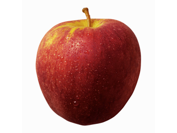 Food tip: Eat an apple before lunch.