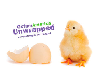 Oxfam America's gift of a dozen chicks