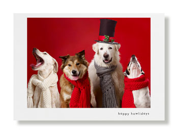 Hooray for the Underdog holiday card
