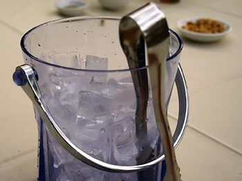 Ice bucket and scoop