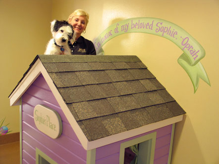 Sophie's suite at PAWS