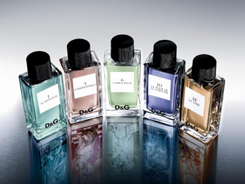 Dolce and Gabbana Fragrance Anthology