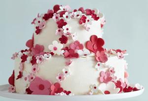 Gina DePalma's Toasted Almond Cake with Mascarpone Cream and Amarena Cherries