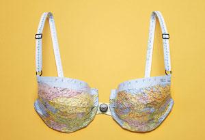 world map bra