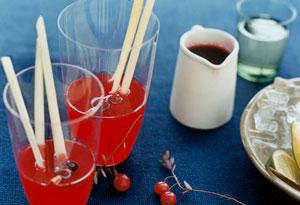 Cranberry-Lemongrass Martini