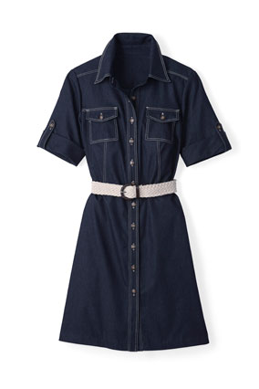 Dress Barn denim shirtdress