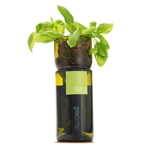 Growbottle Herb Planter