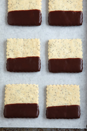 Poppy Seed Squares with Chocolate Tips