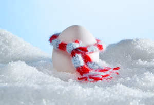 egg with scarf