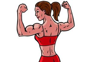 muscle bulk