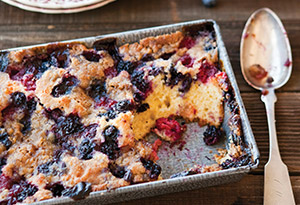 Berry Long Cake with Ginger Crumb