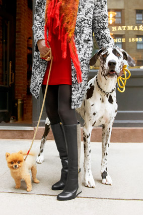 woman with dogs in mini skirt