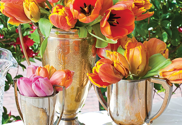 Tulips in trophies
