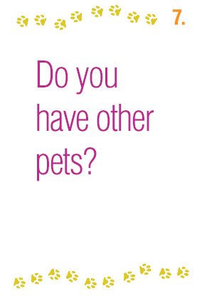 Do you have other pets?