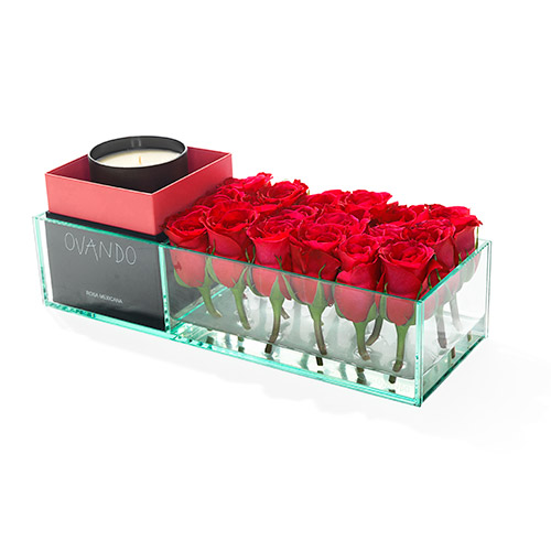 Ovando candle and roses set