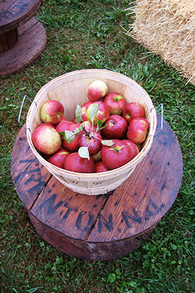 Westwind Orchard apples