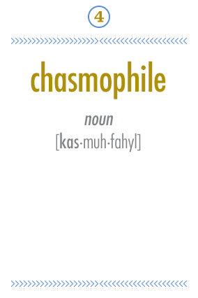 Chasmophile
