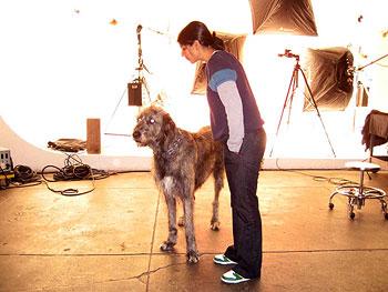 Gideon, the dog