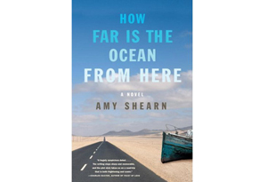 How Far is the Ocean from Here by Amy Shearn