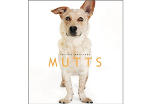 Mutts by Sharon Montrose