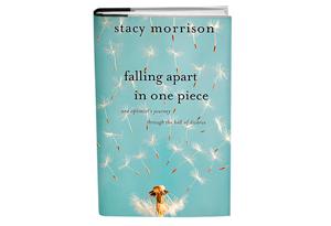 Falling Apart in One Piece: An Optimist's Journey Through the Hell of Divorce  by Stacy Morrison