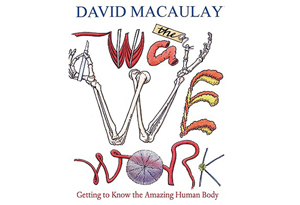 The Way We Work by David Macaulay