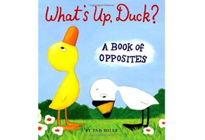 What's Up, Duck?: A Book of Opposites by  Tad Hills