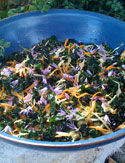 Kale Apple and Chive Flower Salad