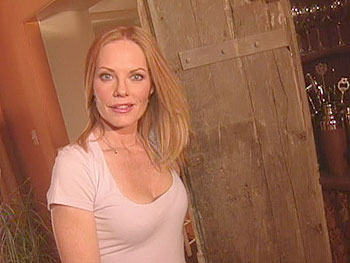 Marg Helgenberger converted an old cabinet into a bar.