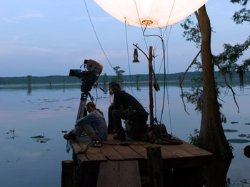 Lighting on Caddo Lake