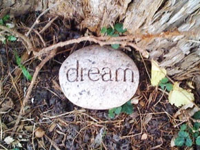 Dream rock in Simran's yard
