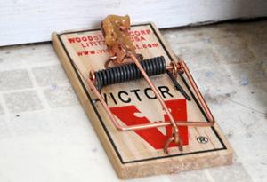 A mousetrap