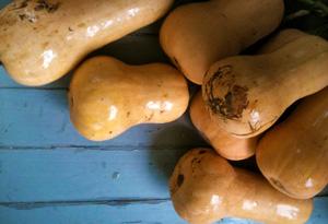 Simran Sethi's homegrown gourds