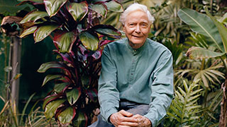 Poet Laureate W.S. Merwin on His Connection to Nature