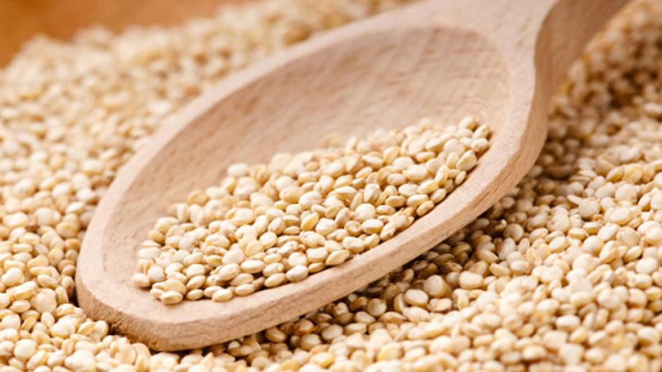 quinoa - photo #44