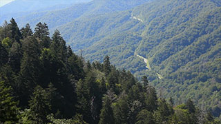 Breathing Space: The Great Smoky Mountains