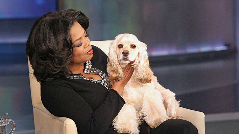 What Oprah Knows For Sure About Peace and Relaxation