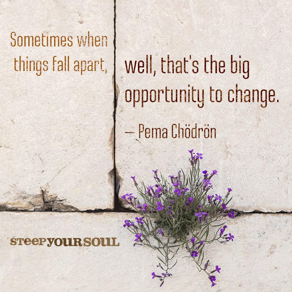 Pema Chodron Quotes. QuotesGram