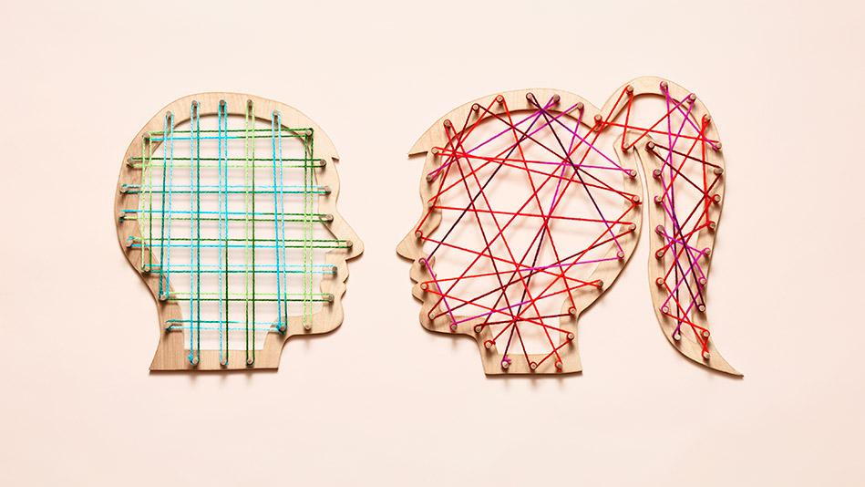 brains wired