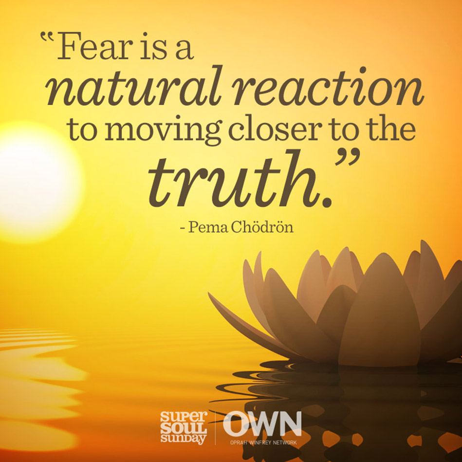 Pema Chodron Quotes Prepossessing Pema Chodron Quote About Fear